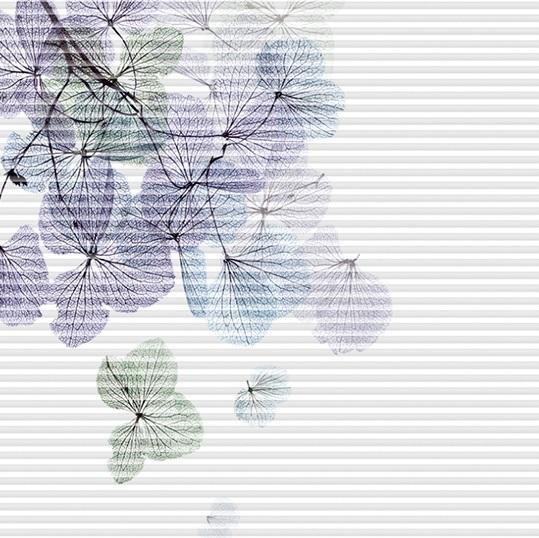 designová řada plisé žaluzií FLEUR