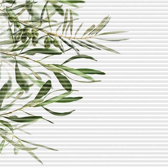 designová řada plisé žaluzií OLIVA