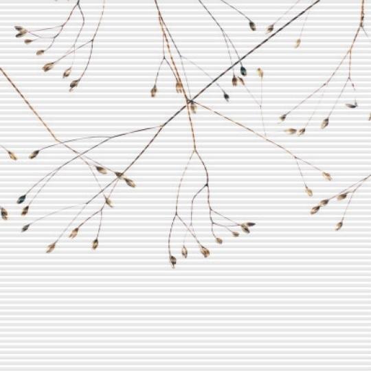 plisé IDA větvičky nahoře zvětšené