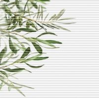 designové plisé OLIVA
